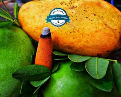 5 Stück Riesenräucherkegel Mango