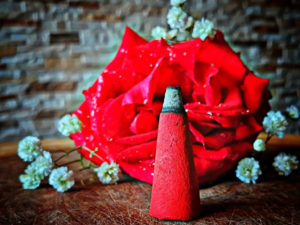 5 Stück Riesenräucherkegel Rose